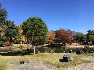 Autumn_leaves1