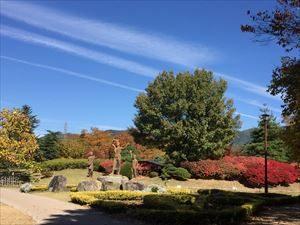 Autumn_leaves4